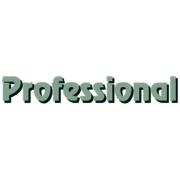Gebäudereinigung Professional